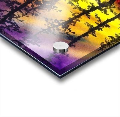 Bright Sunset Through The Trees Acrylic print