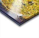 Autumn1 Acrylic print