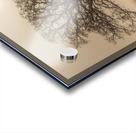 Trees in grass fields Acrylic print