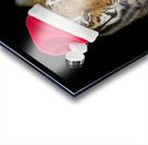 Tiger with Santa hat Acrylic print