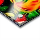 Colour Warriors  Acrylic print