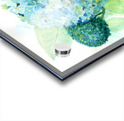 Lovely Blue Hydrangia  Acrylic print