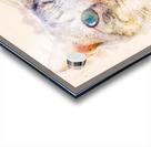 Dragon Li Hau cat Acrylic print