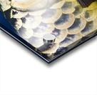 Closeup Of A Fish Acrylic print