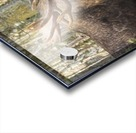 Bull moose (alces alces), rutting season; Alaska, United States of America Acrylic print