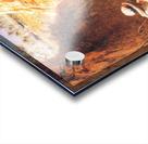 Oryantal Tabolar Acrylic print