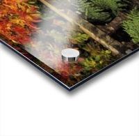 Balustrades & Autumn Colours, Castlewellan, Co Down, Ireland Acrylic print