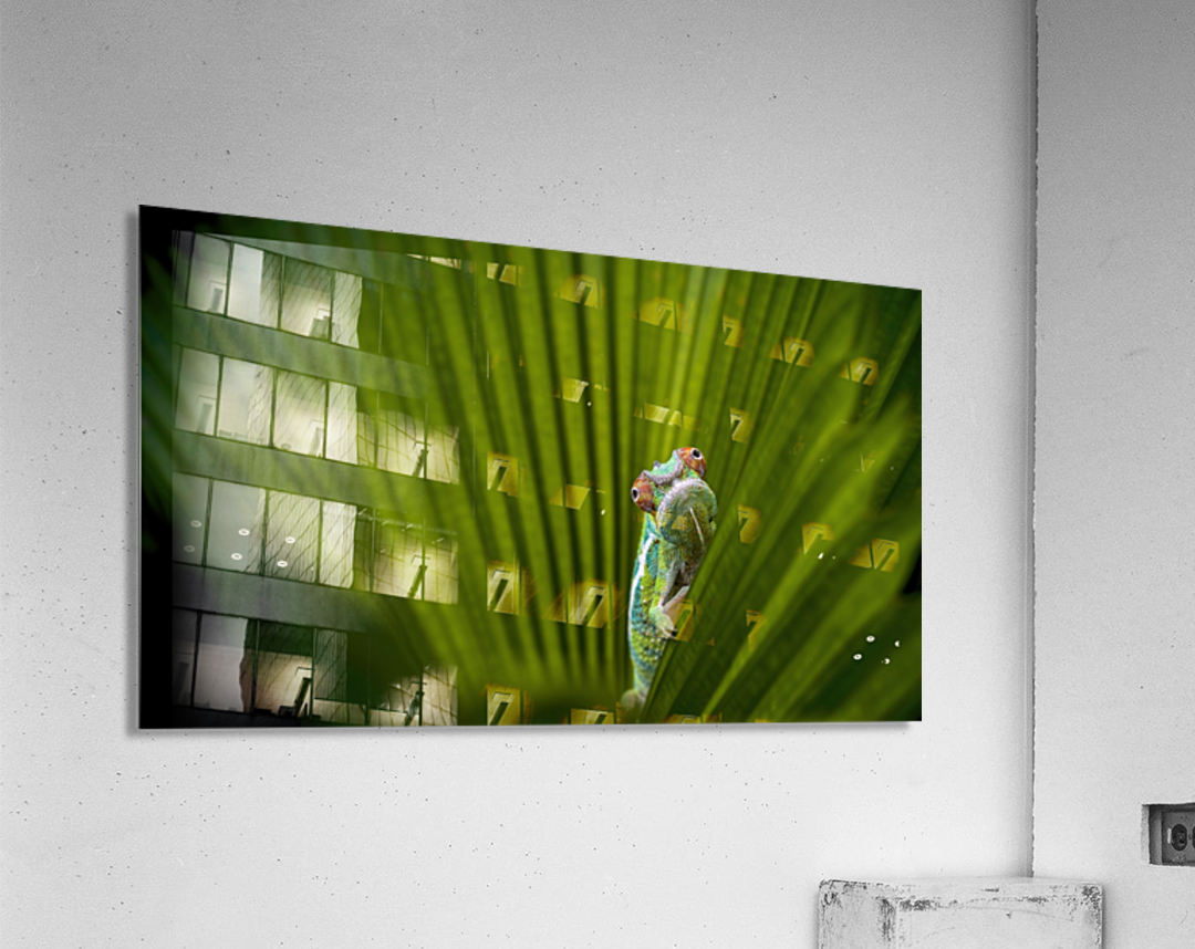 What Is That  Acrylic Print