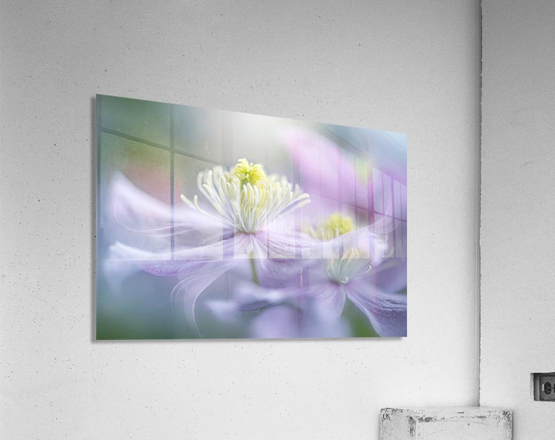 Sway  Acrylic Print