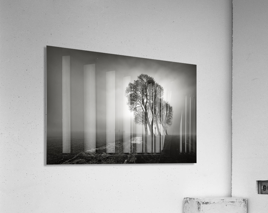 Fog  Acrylic Print