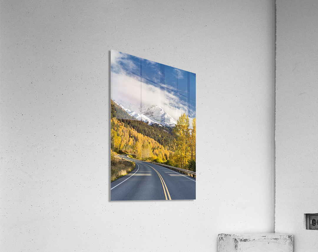Snow-capped Kenai Mountains dwarf the Seward highway, trees covered in yellow leaves in autumn line the road, South-central Alaska; Seward, Alaska, United States of America  Acrylic Print
