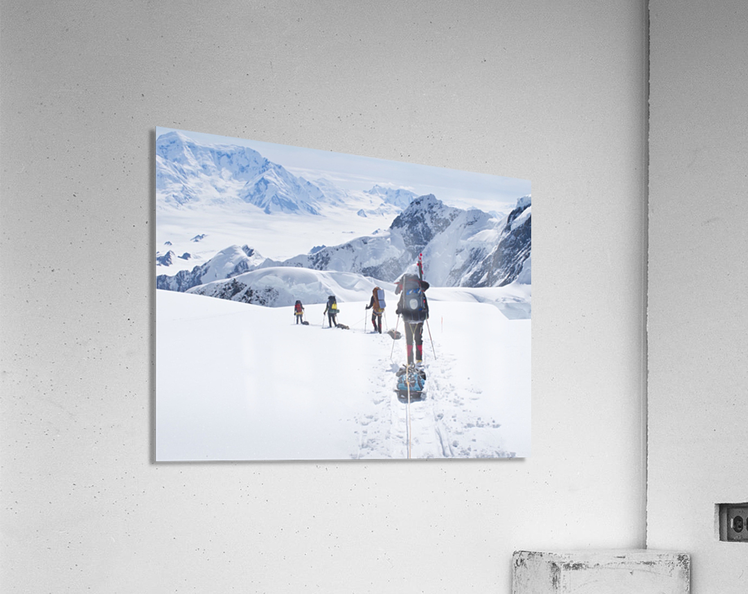 Mountaineer Group Descends Into The Maccarthy Gap On The King Trench Route, Mt. Logan, Kluane National Park, Yukon Territory, Canada, Summer  Acrylic Print