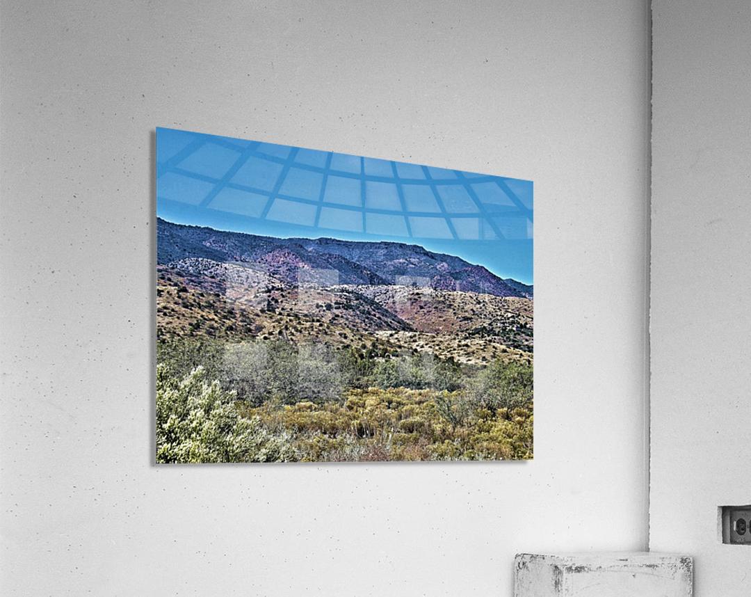 Jerome-1  Acrylic Print