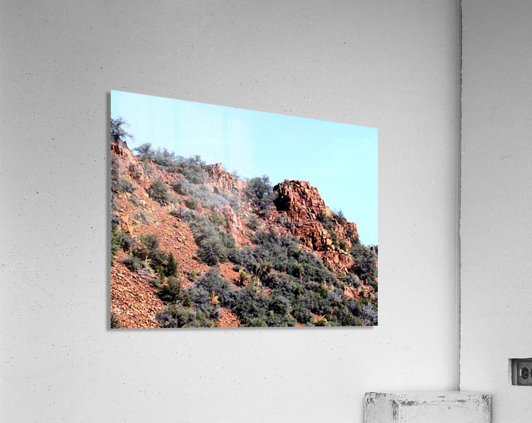 Jerome-6  Acrylic Print