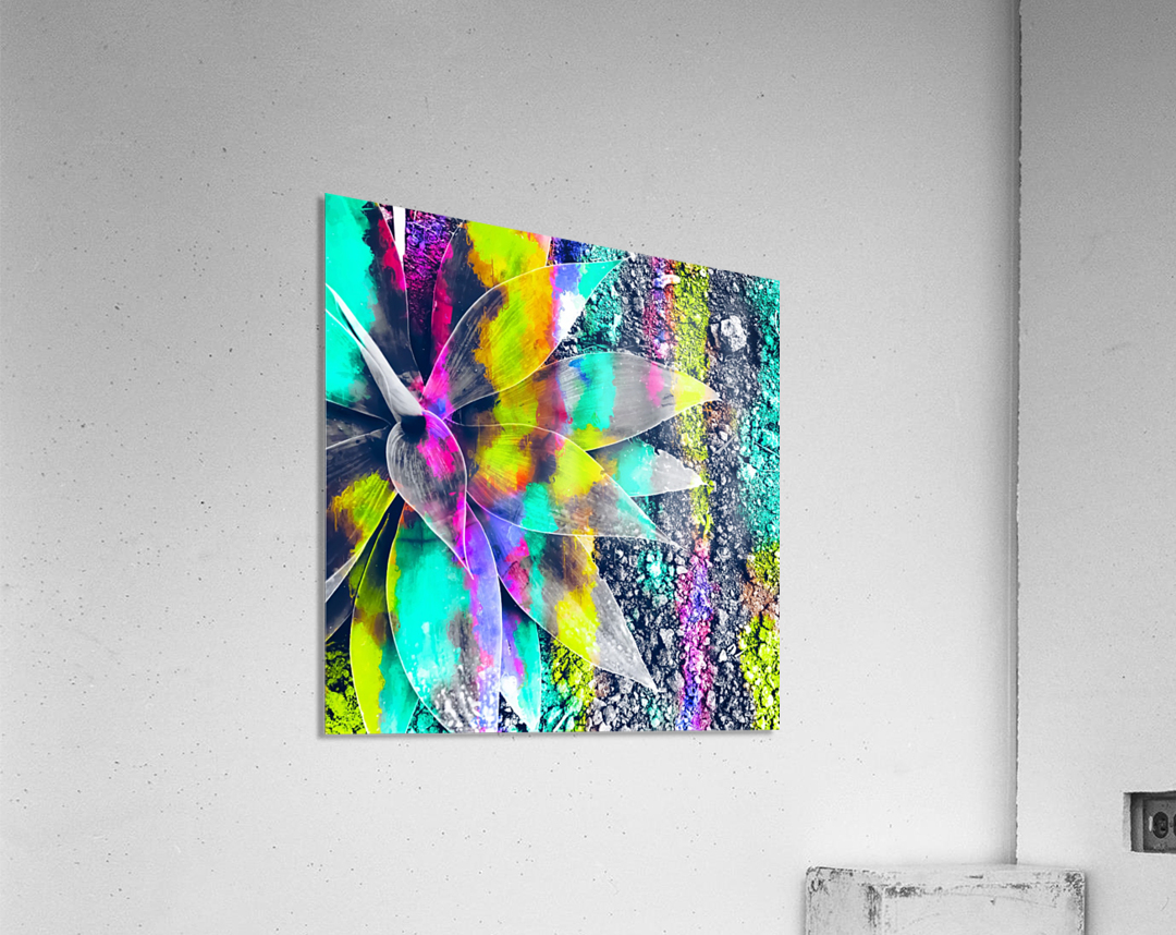 succulent plant with painting abstract background in green pink yellow purple  Acrylic Print
