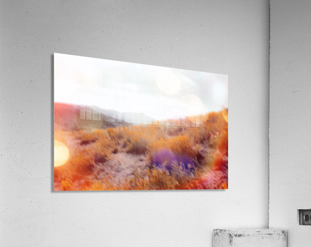 yellow flower field on the mountain with summer light bokeh abstract  Acrylic Print