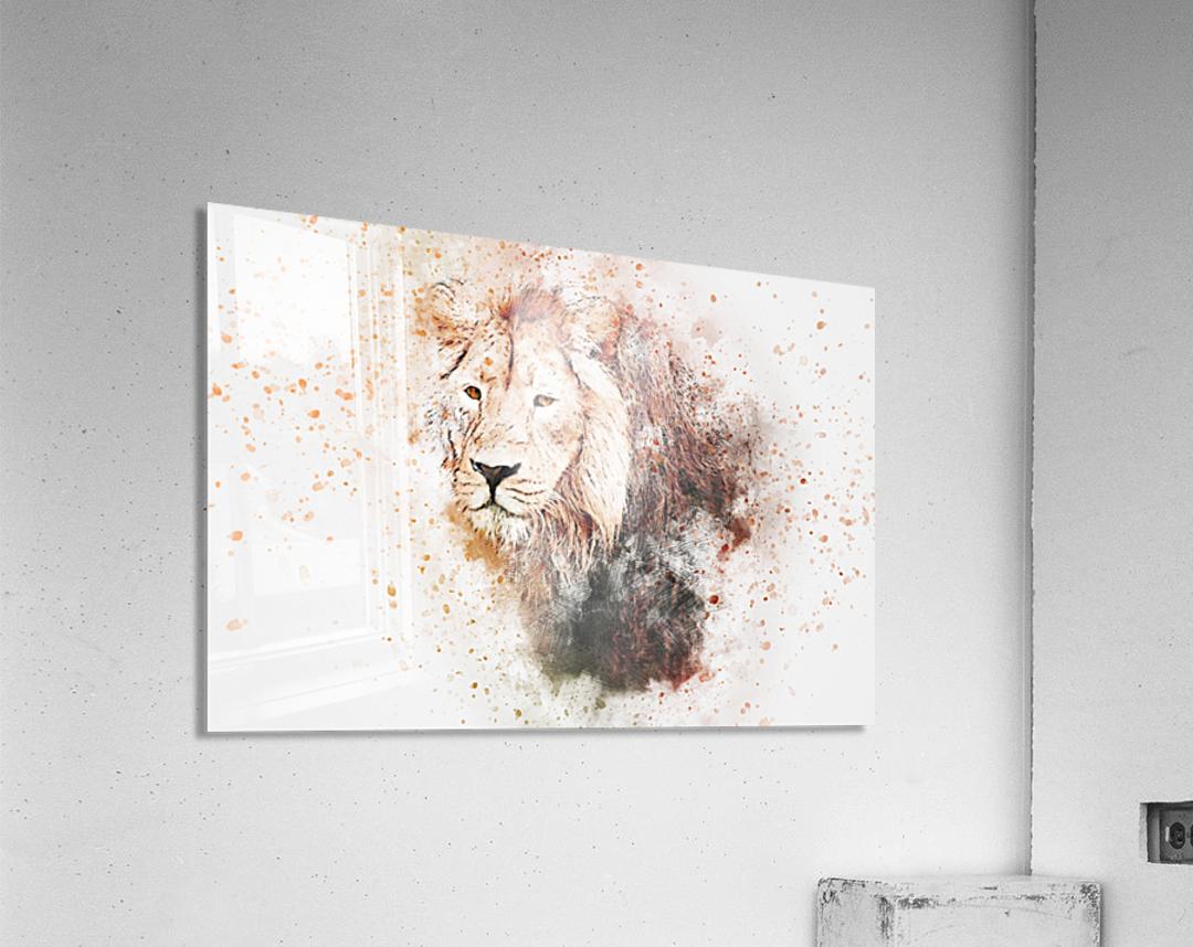 lionss  Acrylic Print