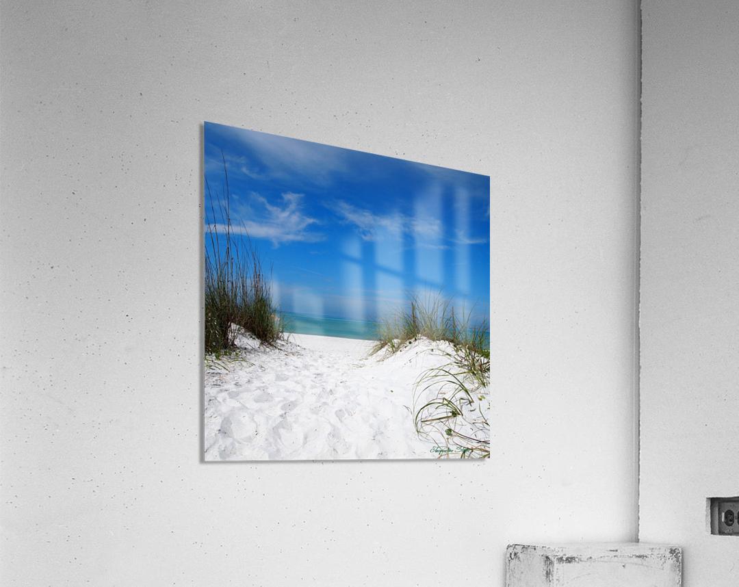Coquina Dunes  Acrylic Print