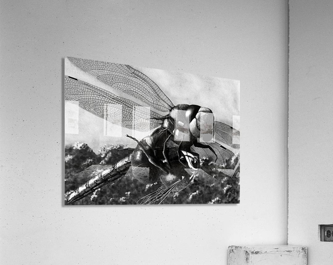 Dance Until Death  Acrylic Print