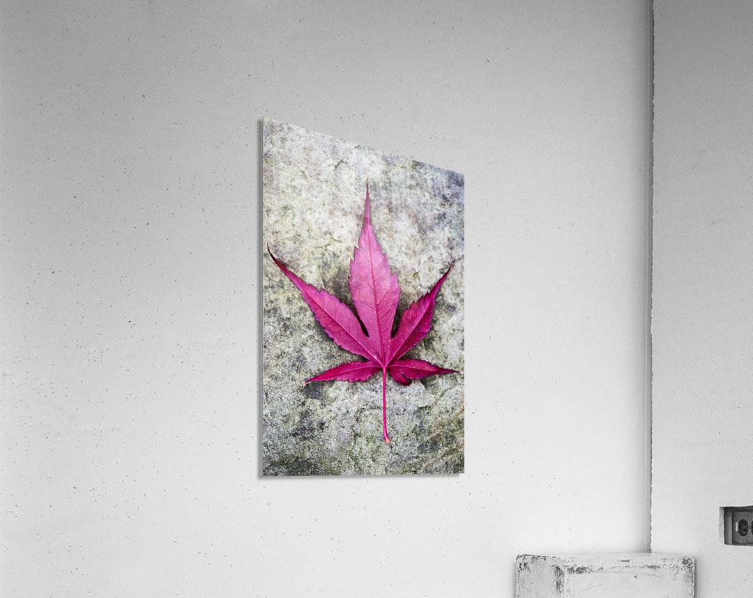 Osakasuki  Acrylic Print