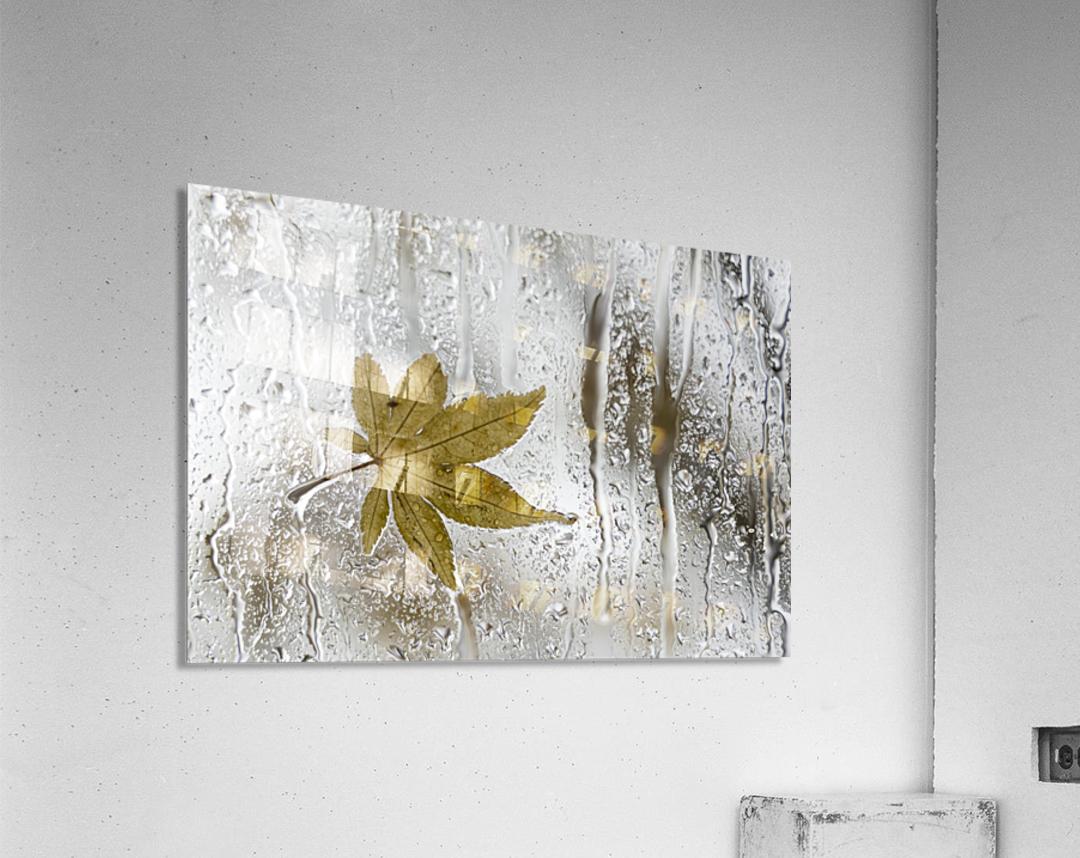 Melancolie  Acrylic Print