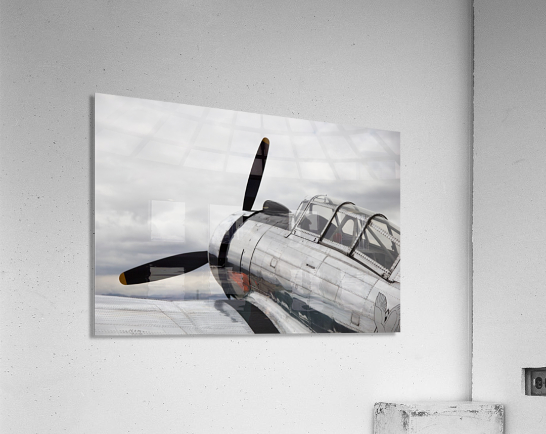 P-53 Nose  Acrylic Print