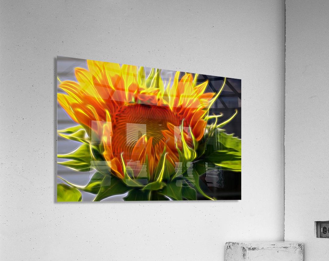 Glowing Sun  Acrylic Print
