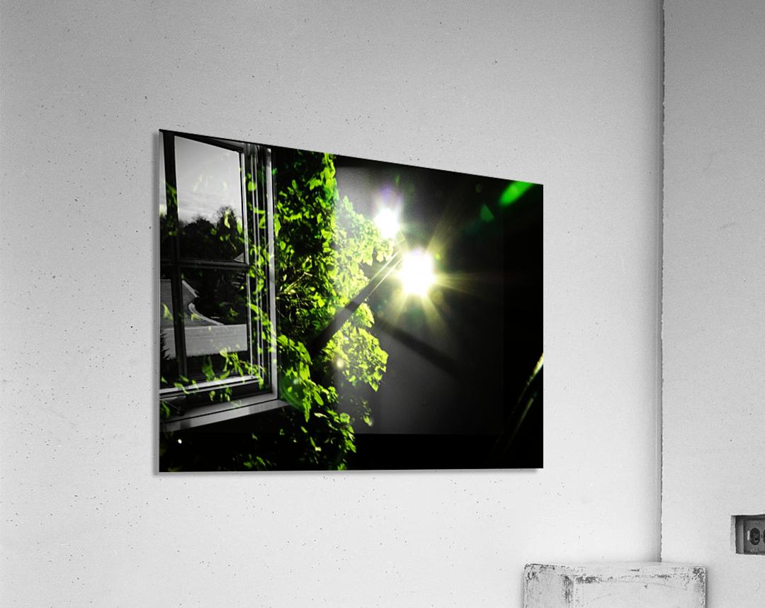 sofn-12072B59  Acrylic Print