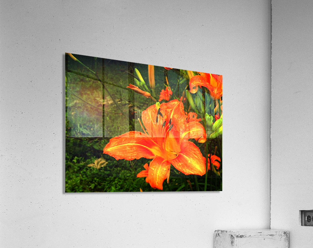 C (7)  Acrylic Print