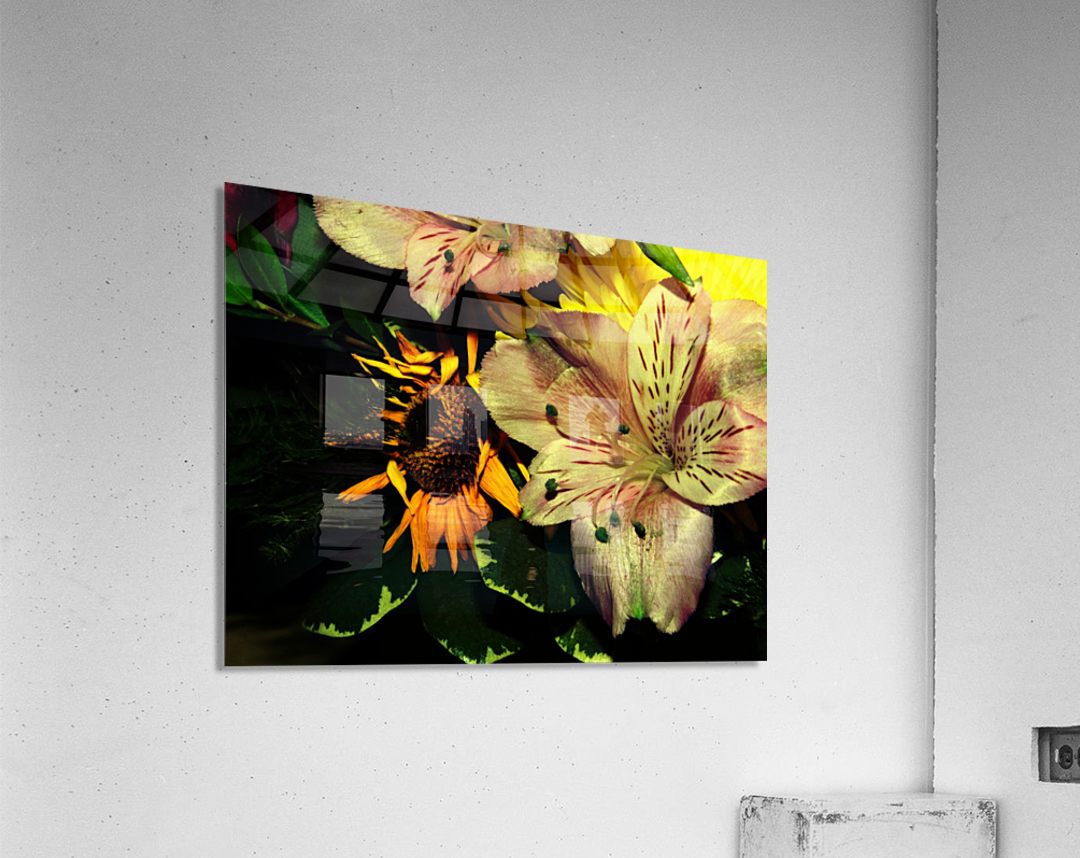 E (1)  Acrylic Print