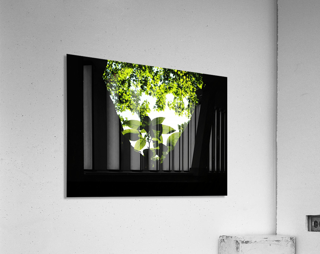 sofn-5DA369EA  Acrylic Print