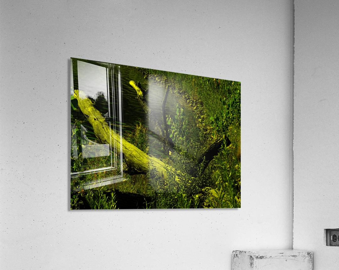 sofn-D8D8949C  Acrylic Print