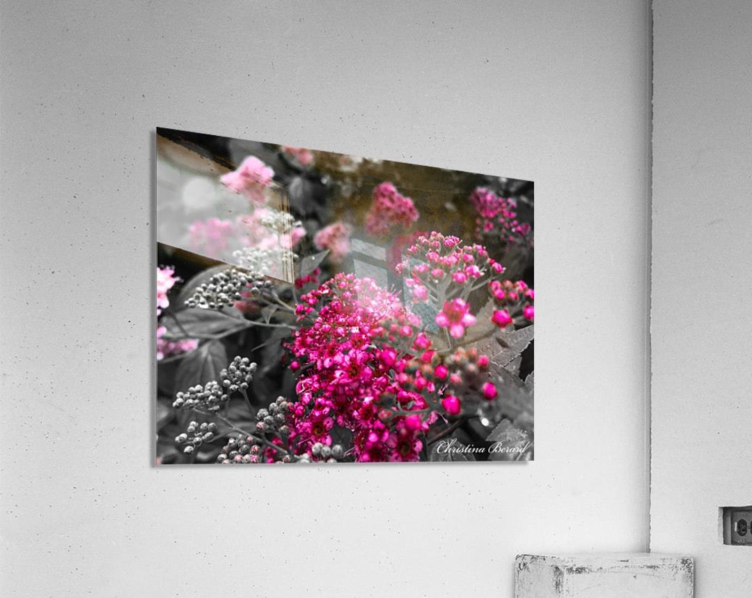 Collection Vinyasa .2  Impression acrylique