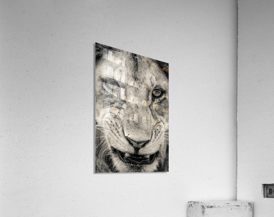 Grrrr  Acrylic Print