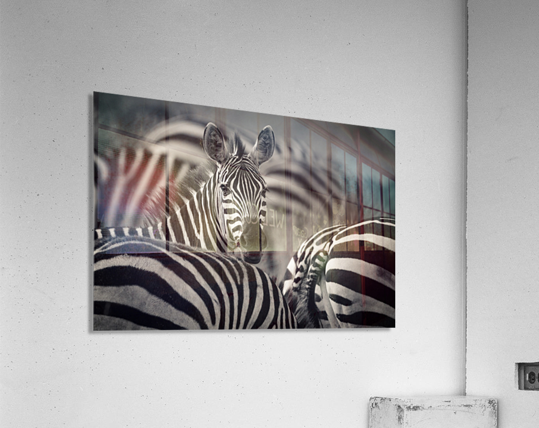 Who is there by www.jadupontphoto.com  Acrylic Print