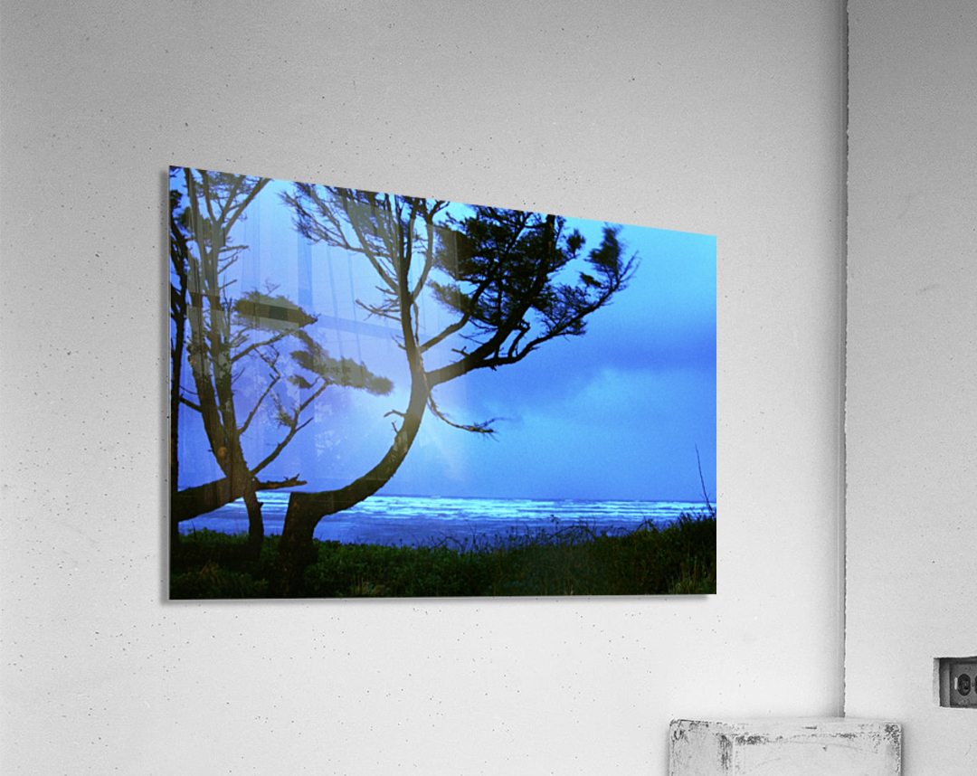 Long Exposure Night Coast  Acrylic Print
