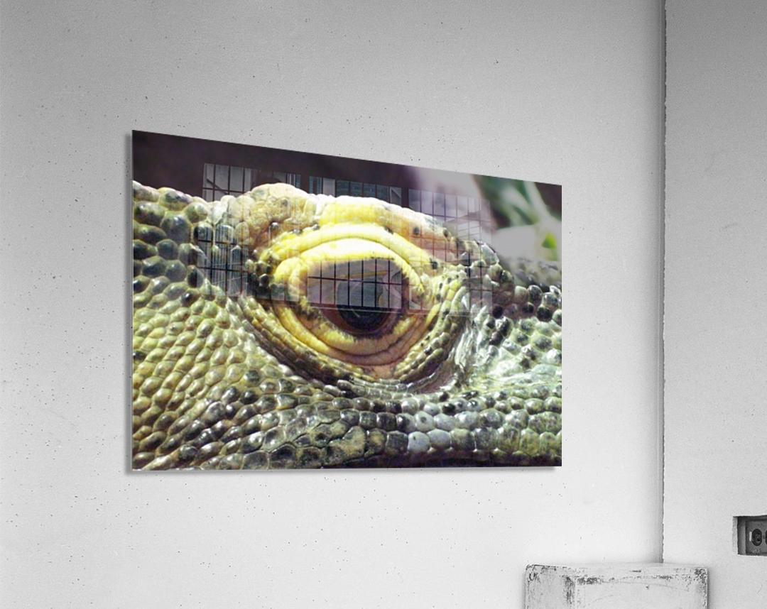 Scale  Acrylic Print