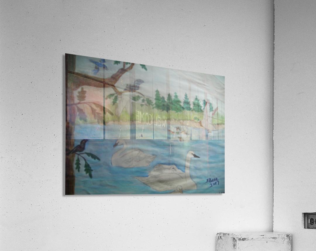 Swan Pond  Acrylic Print