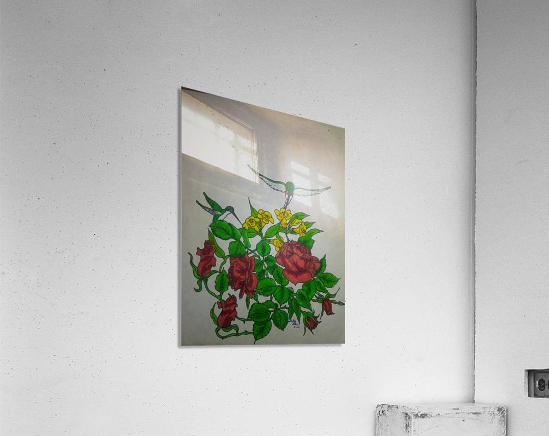Hummingbird Rose  Acrylic Print