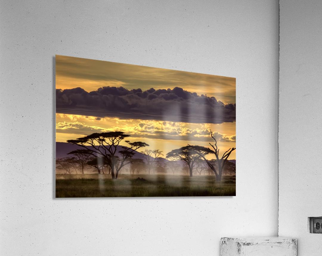 Good evening tanazania  Acrylic Print