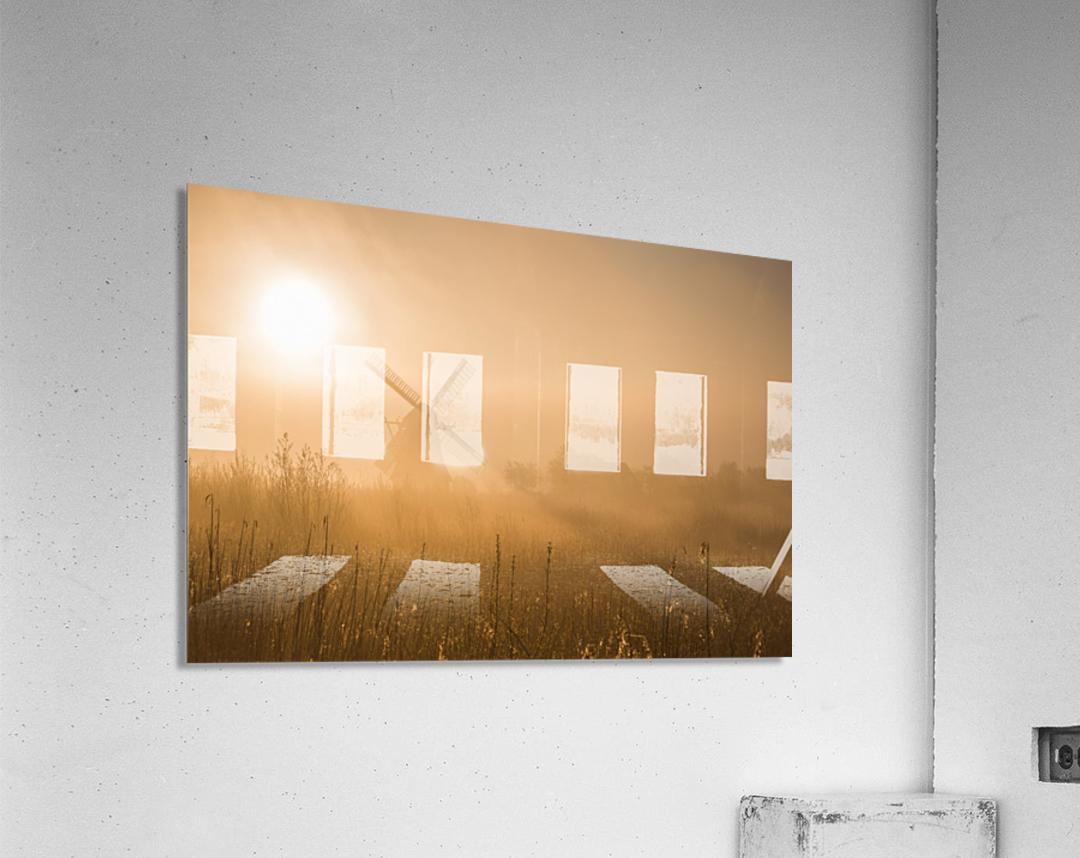Golden Dawn.  Acrylic Print