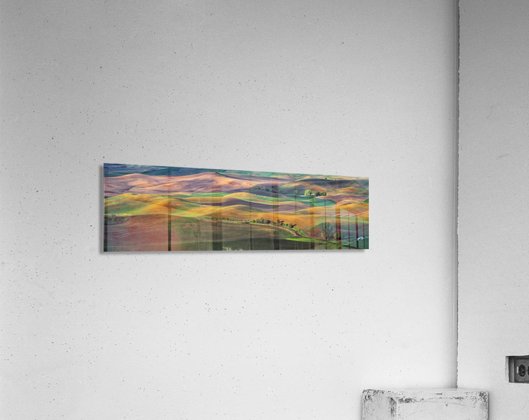 The Palouse  Acrylic Print