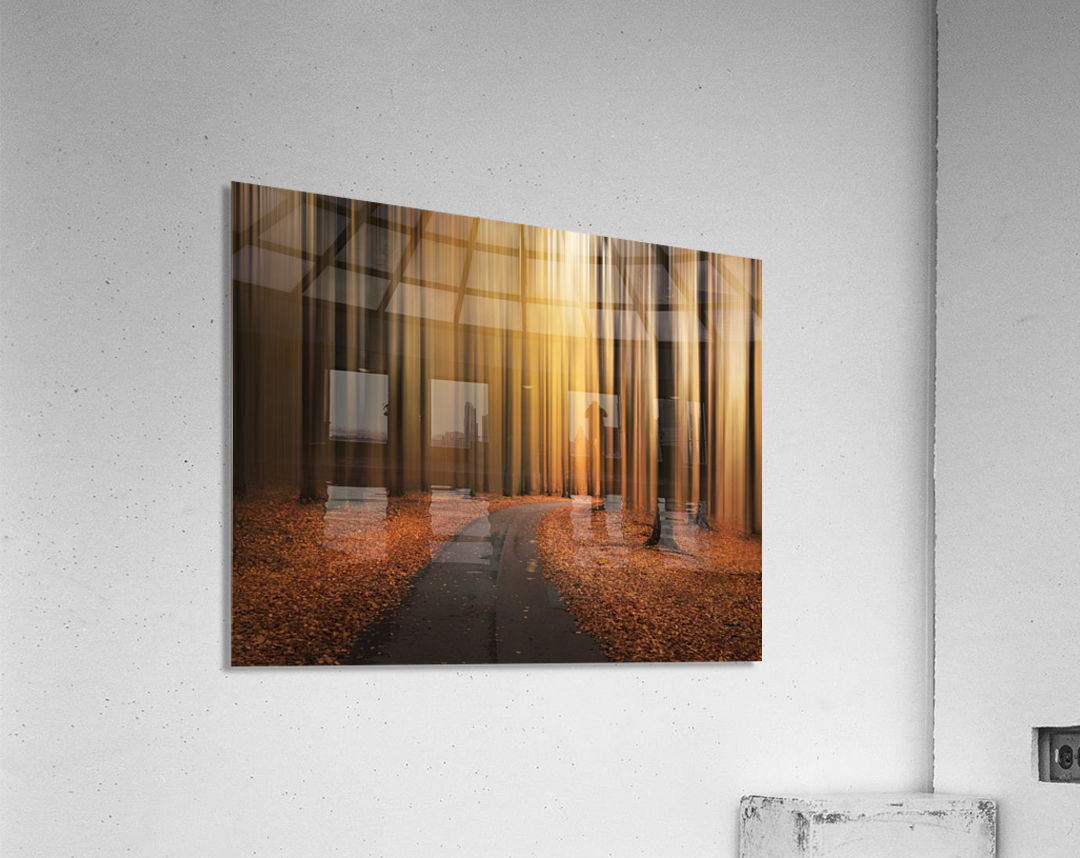 Path to unknown  Acrylic Print