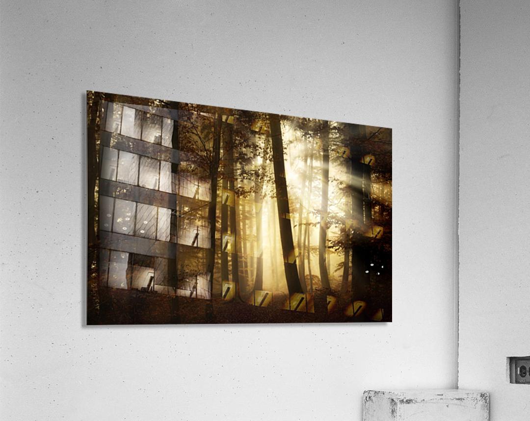 a new day  Acrylic Print