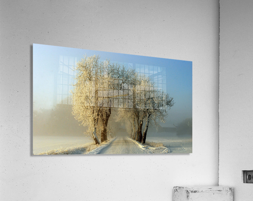 Winter  gateway  Acrylic Print