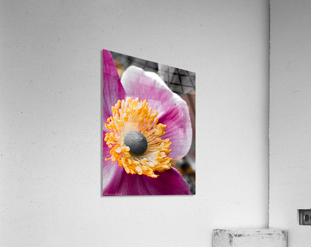 I am pink   Impression acrylique