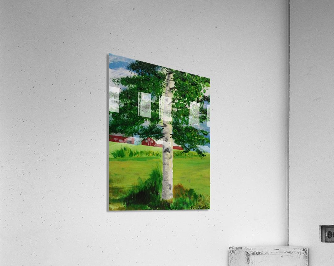 Kuopio Farmhouse  Acrylic Print