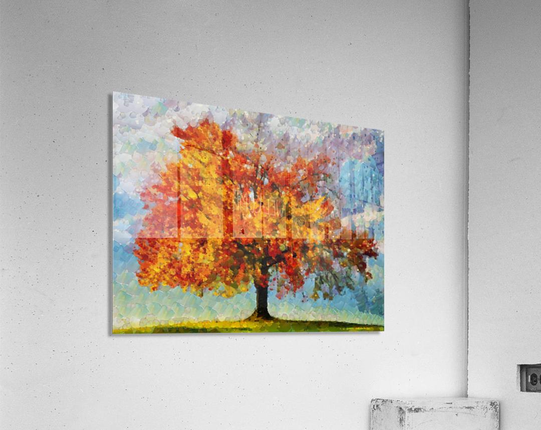 HC0310  Acrylic Print