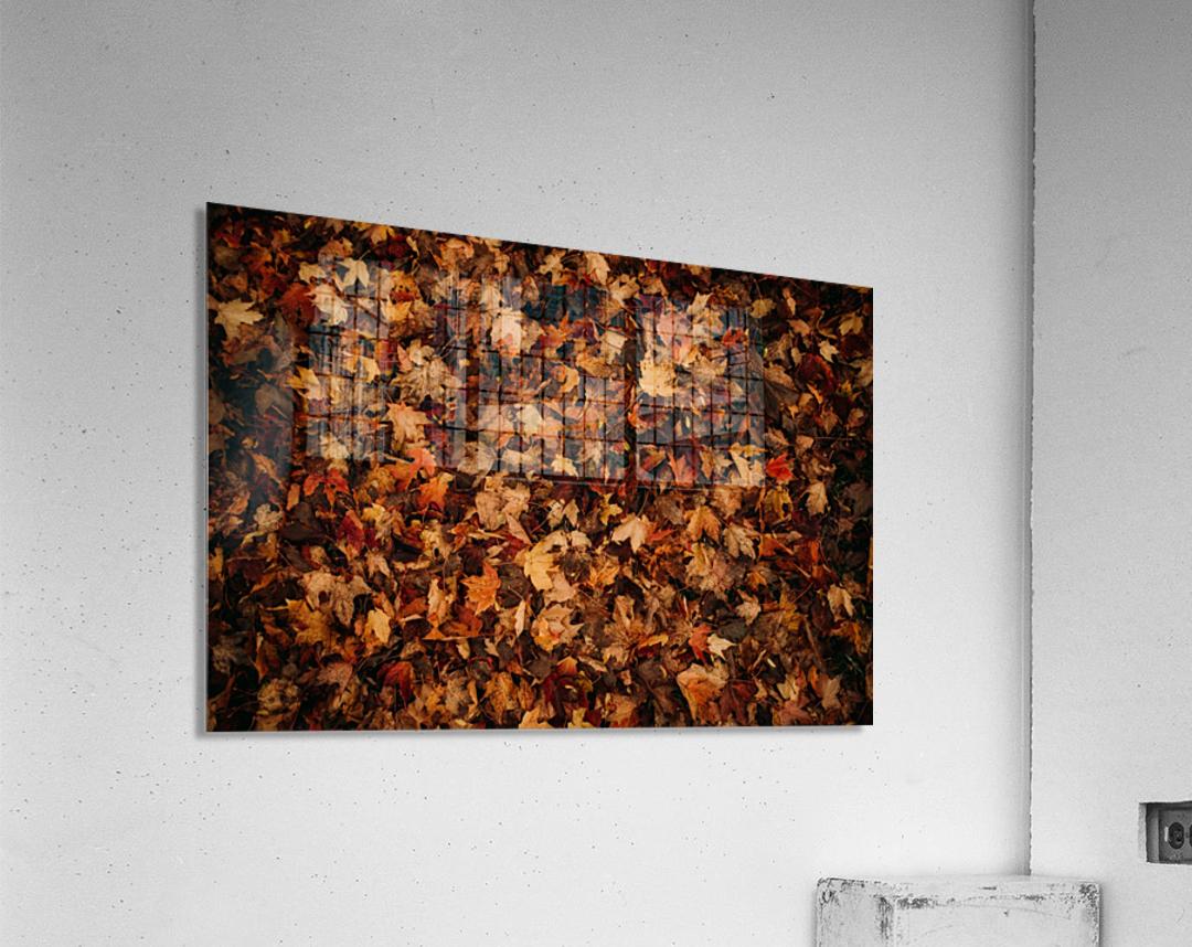 Feuilles mortes  Impression acrylique