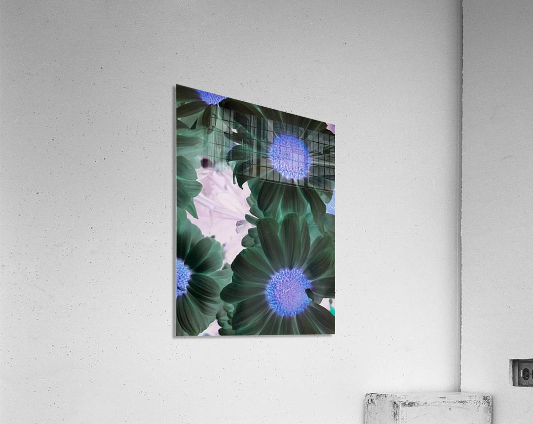 Purple44flow   Impression acrylique